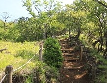 登山道 整備