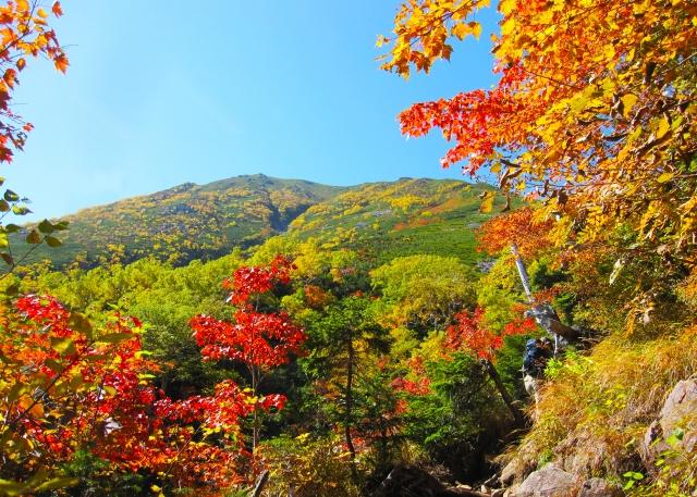 山ガールのファッション秋の場合はコレ!!